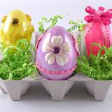 egg-carton