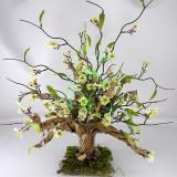 tree-fb