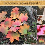 Dictionary Leaves